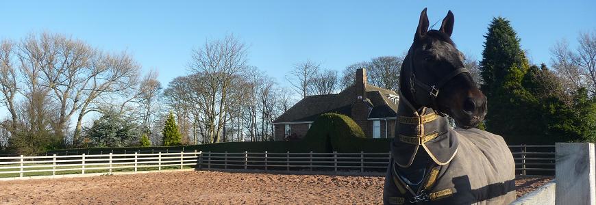 Parklands Equestrian